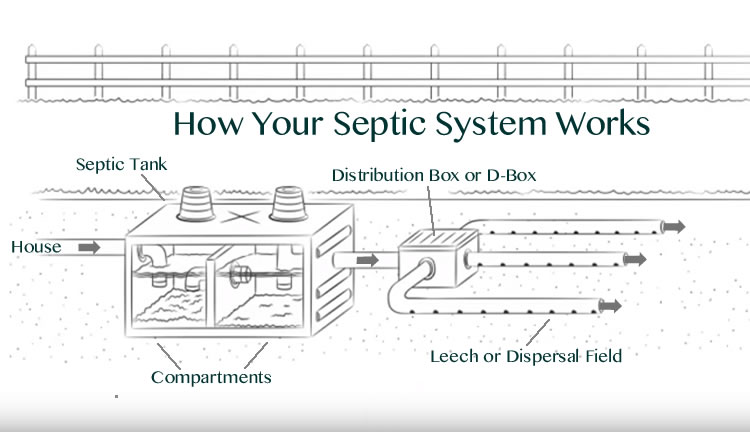 How Does Your Septic System Actually Work
